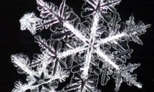 content_snowflake-001